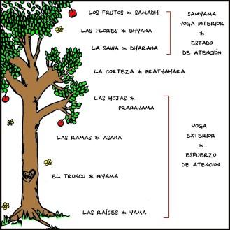 árbol-del-Yoga